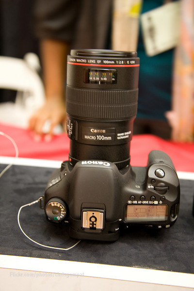 Canon 7D and 100mm F2.8 L Macro Hybrid IS